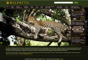 wilpattu.com